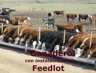 110 Has. Ganaderas Con Instalaciones De Feedlot.