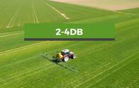 Herbicida  2,4 DB