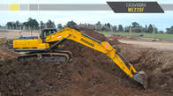 Excavadora a oruga Michigan ME220F