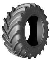 Neumáticos Border 19.5L X 24