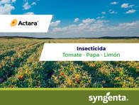 Insecticida Actara Tiametoxam - Syngenta