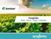 Fungicida Amistar® Azoxistrobina - Syngenta