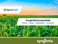 Fungicida Curasemilla Apron ® Gold