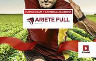 Insecticida Ariete Full - Tiametoxam + Lambdacialotrina