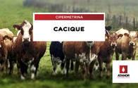Curabicheras Cicatrizante Cacique - Cipermetrina
