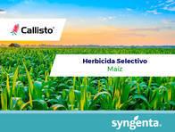 Herbicida Callisto ® Mesotrione - Syngenta