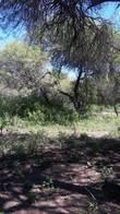 Campo En Pozo Del Mortero