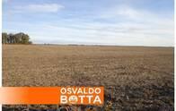 Campo En Venta. Eduardo Castex, La Pampa. 612 Ha. Mixto