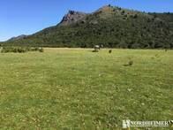 Campo En Venta En El Maitén. 3605 Has. Ganadero