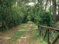Campo En Venta En San Andrés De Giles.6,5 Has. Agrícola