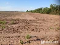 Campo En Venta En Tobas. 6100 Has. Agrícola.