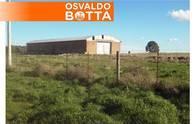 Campo En Venta. Felipe Sola, Bs As. 1400 Ha. Mixto