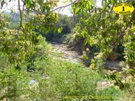 0996HP Campo En Venta. Oran. 960 Has. Uso Agrícola