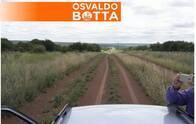 Campo En Venta. Unanue, La Pampa. 900 Ha. Mixto.