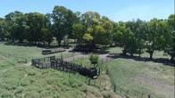 Campo En Venta. Villa Fortabat Bs As. 172 Ha