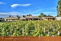 Casa De Campo - Bodega - Viñedo - Golf