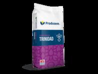 Cebada Forrajera Trinidad