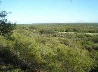 Campo de 2.700 has en Alto Pencoso, San Luis.