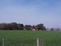 Chacabuco 582 Has Agricolas