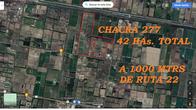 Chacra De 42 Has En Alto Valle, Río Negro