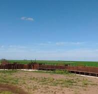 Corral Completo Para 100 Cabezas Agraso Maderas
