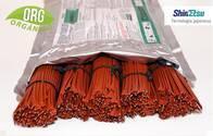 Feromonas Isonet L TT - Control de Lobesia Botrana Agro Roca