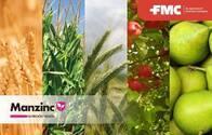 Fertilizante ManZinc