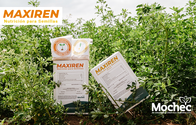 Fertilizante Maxiren Semillas - Mochec