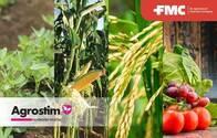 Fertilizante Agrostim®