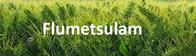 Herbicida Flumetsulam