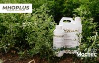 Fungicida Mhoplus Tebuconazole - Mochec