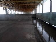 Galpón De Terminación - Engorde En Pelo De Agua