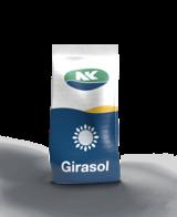 Girasol SYN 3970 CL NK Semillas