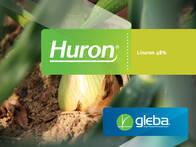 Herbicida Huron® Linuron - Gleba