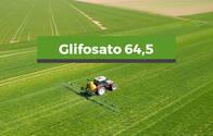 Herbicida Glifosato 64,5