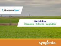 Herbicida Gramoxone ® Super Paraquat - Syngenta