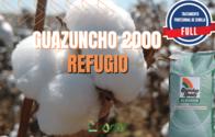 Semillas De Algodón Guazuncho 2000  - Tratamiento Full