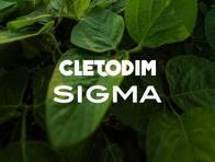 Herbicida Cletodim Sigma - Sigma Agro