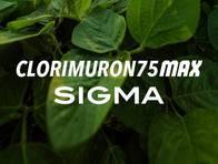 Herbicida Clorimuron 75 Max Sigma - Sigma Agro