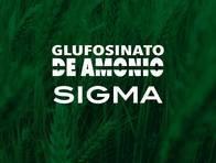 Herbicida Glufosinato de Amonio Sigma - Sigma Agro