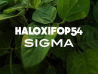 Herbicida haloxifop 54 sigma haloxifop p metil-sigma agro