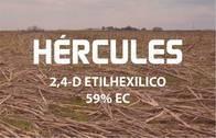 Herbicida Hercules 2,4 D - Philagro