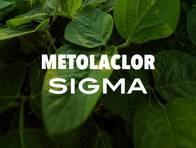 Herbicida Metolaclor Sigma - Sigma Agro