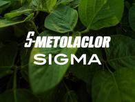 Herbicida S-Metolaclor Sigma - Sigma Agro