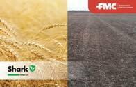 Herbicida Shark 40 C Carfentrazone etil - FMC