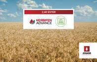 Herbicida Herbifen Advance 2,4-D - Atanor
