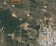 Importante Campo De 800Ha En San Luis