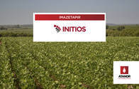 Herbicida Initios Imazetapir - Atanor