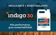 Inoculante Y Bioestimulante Indigo 30 Para Semilla De Trigo
