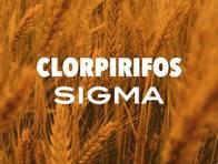Insecticida Clorpirifos Sigma - Sigma Agro